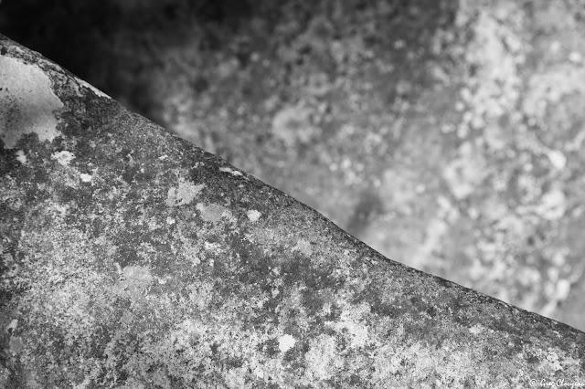 50 nouvelles Nuance de grès n°7 Forêt de Fontainebleau