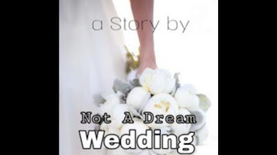 Novel Not A Dream Wedding pdf