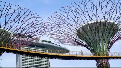 Naik Terus! Singapura Lagi-lagi Cetak Rekor Kasus Harian COVID-19