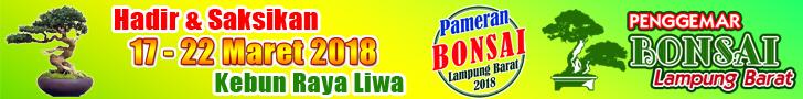 Pameran Bonsai Lampung Barat 2018