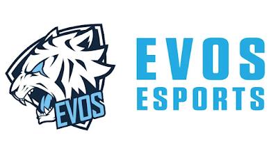 Lowongan Kerja PT Evos Esports Indonesia Jakarta April 2021