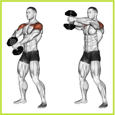 Shoulder Exercises For Men