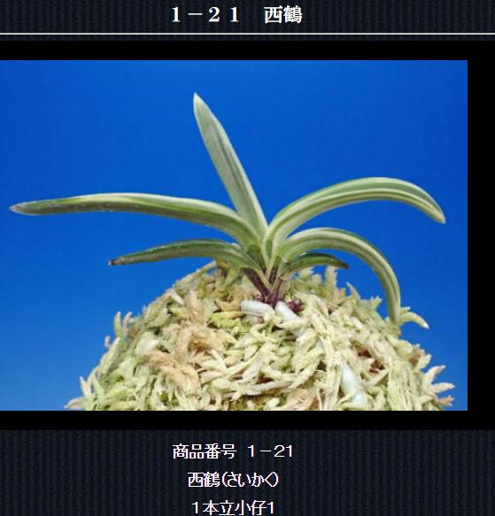 http://www.fuuran.jp/1-21.html