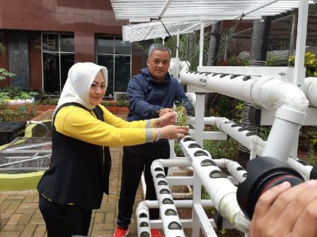 Wali Kota Jakarta Pusat Tanam Beragam Bibit Sayuran di JP Farm