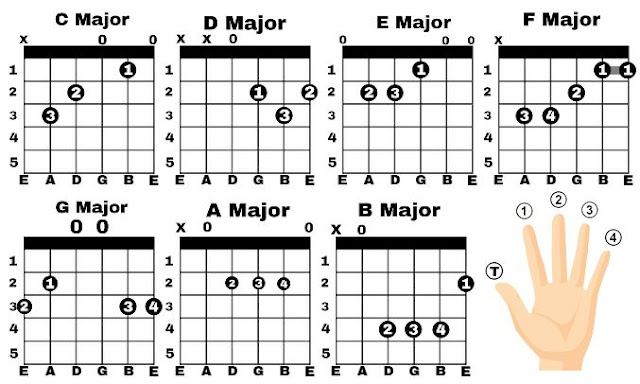 "Guitar Major Chords | What is a Major chord? There are 7 major guitar chords they are C major chord, D major chord, E major chord, F major chord, G major chord, A major chord, B major chord. You probably see like ""C"" or ""C Major"" or ""CM"" in guitar chords chart this is all major chords and also you have seen ""Cm"" this is not major this is minor. So, the most important thing to remember for beginner upper ""M"" means Major guitar chord and lower ""m"" means Minor guitar chord. major chords guitar, major chord notes, major scale guitar chords chart, easy guitar chords songs, guitar lesson, tips for beginner guitar player, major and minor chords guitar major to minor scales major triads guitar basic guitar songs how to play chords on piano for songs how to play chords on piano for worship c major power chord guitar chords in a minor how to tell if a chord is major or minor minor chord formula down a major third power chords vs open chords minor chord definition minor chord music definition minor chord meaning piano minor chords"