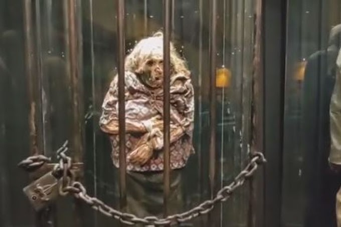 La Historia de la  Momia Bruja de Guanajuato