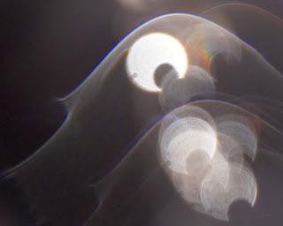 unexplained veils