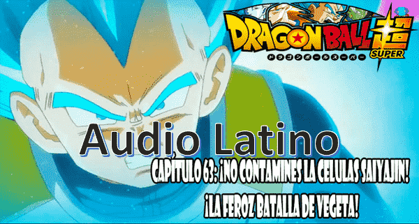 Ver capitulo 63 en audio latino online, en el presente, Vegeta entrena en la habitación del Tiempo del palacio de Kamisama.