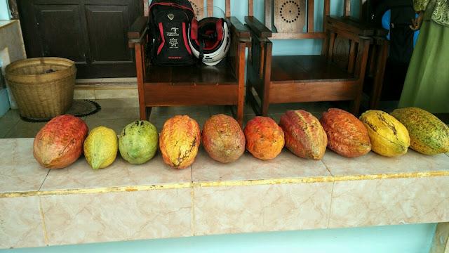 Desa Wisata Kampung Emas Plumbungan, Kuliner Berkat Ndalem, Ingkung Emas, Wedang Seruni, Batik Topeng Kayu Desa Wisata Bobung