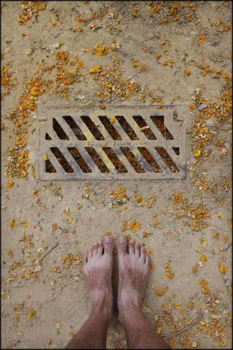 fotografia,autorretrato,pies,limites,variaciones,alcantarilla,flores,suelo,serie,arte