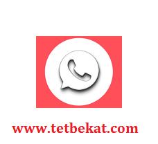 تحميل برنامج WhatsApp Transparent للأندرويد
