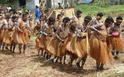 Rok Rumbai, Pakaian Adat Papua