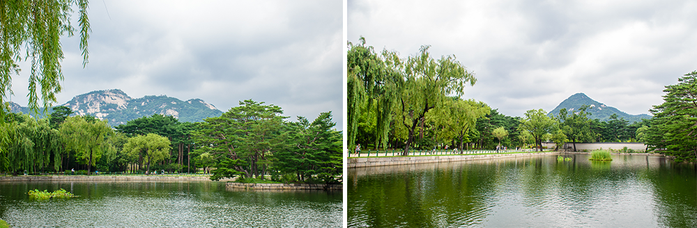 nature and beauty of Gyeongbokgung palace in seoul