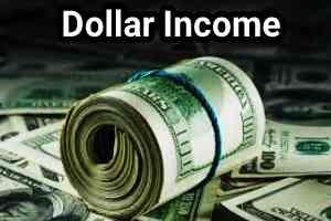 100$ income