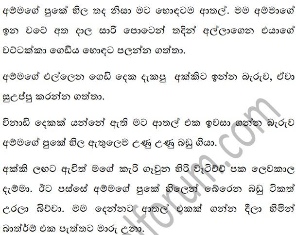 Wal Katha Navarasa: Sinhala Wal Katha Amma අම්මයි මමයි වල් කතා: Ammai Mamayi 6