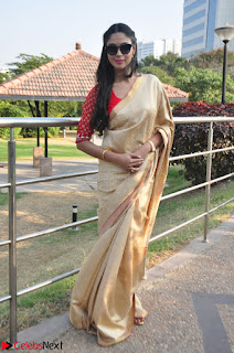 Angana Roy in Silk Saree at Teaching Tree Carnival .xyz 019.JPG