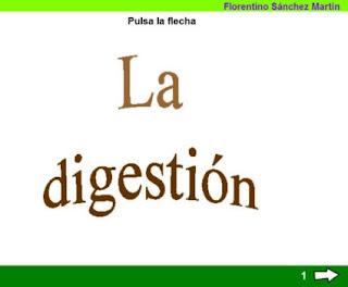 http://cplosangeles.juntaextremadura.net/web/edilim/tercer_ciclo/cmedio/las_funciones_vitales/la_funcion_de_nutricion/digestion/la_digestion/la_digestion.html