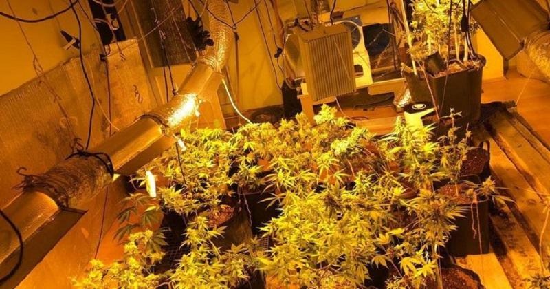 Uyuşturucu imalathanesi polisleri şaşkına çevirdi!