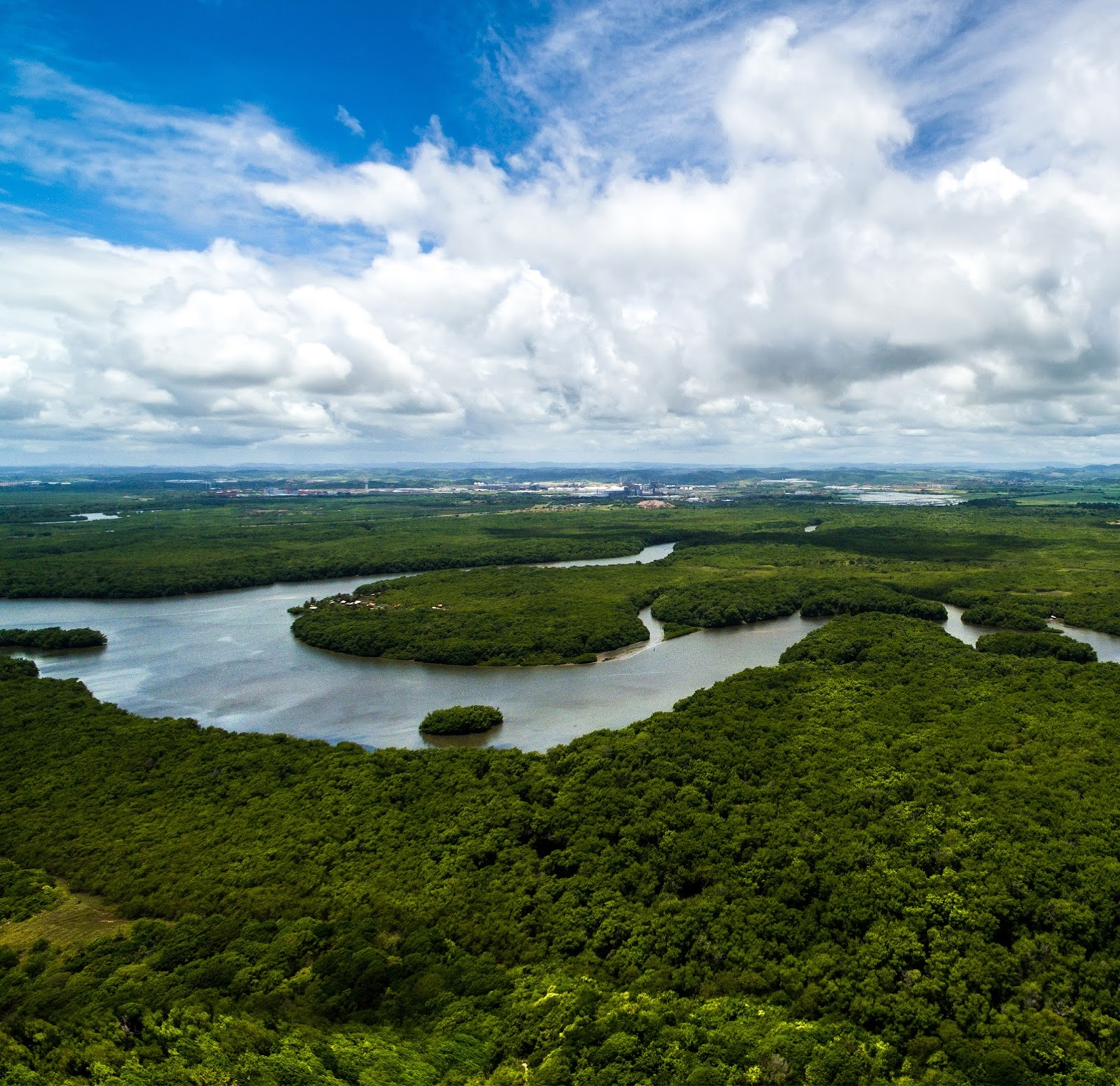 9246528ab5 Evidências de design inteligente no solo da Amazônia