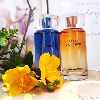 parfums Matières Karl Lagerfeld