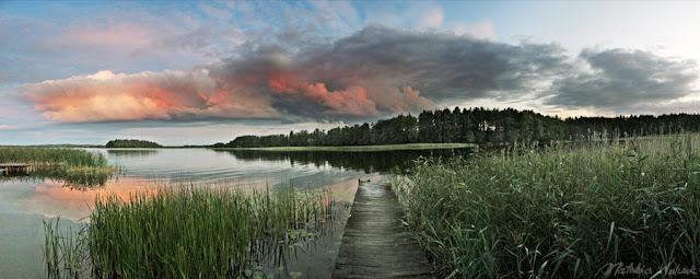 fotografia przyrodnicza Natalia Walczak