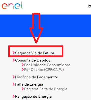 Imagem da Pagina de acesso a Segunda via de fatura Enel Goiás