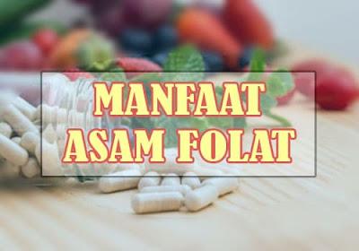 Manfaat asam folat