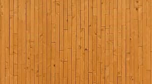 Kerapatan kayu adalah massa atau berat satuan volume yang dinyatakan dalam satuan gram per sentimeter kubik. Kerapatan berhubungan dengan mekanikanya.