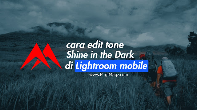 Cara Edit Tone Shine in The Dark di Lightroom Mobile
