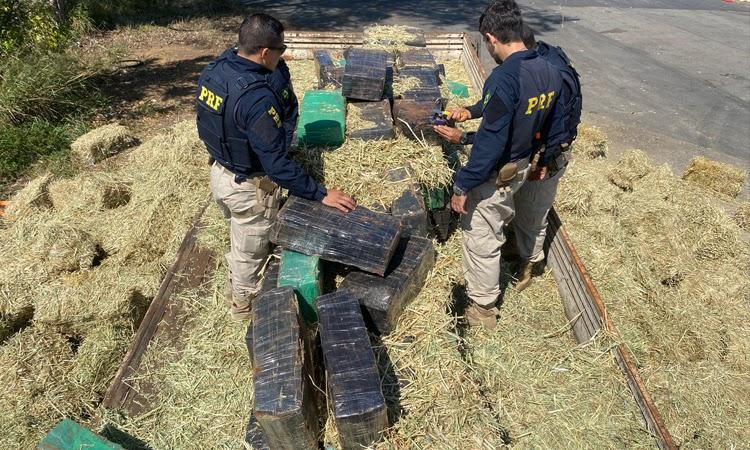 PRF apreende quase 3 toneladas de maconha em meio a carga de feno no Sudoeste da Bahia