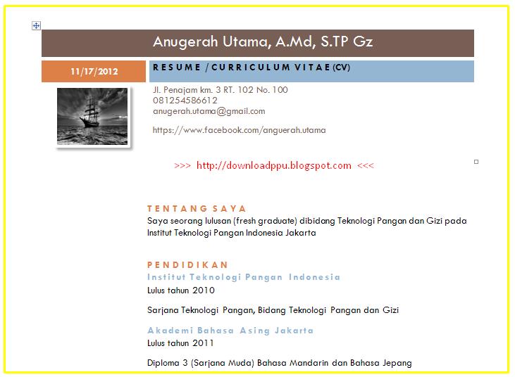 Download Contoh Resume CV (Curiculum Vitae/ Riwayat Hidup) Sederhana format office word doc docx Tahun 2013