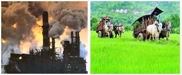 Lingkungan Indonesia