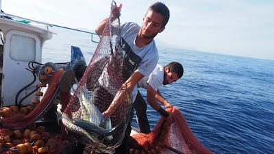 Excursión de Pescaturismo en Sóller