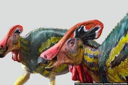 Peneliti Meksiko Temukan Tlatolophus Galorum, Dinosaurus Spesies Baru di Coahuila