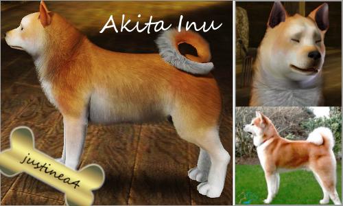 The Sims 3 : Akita Inu
