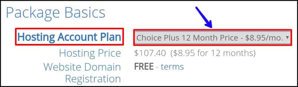 Bluehost Account Hosting Plan