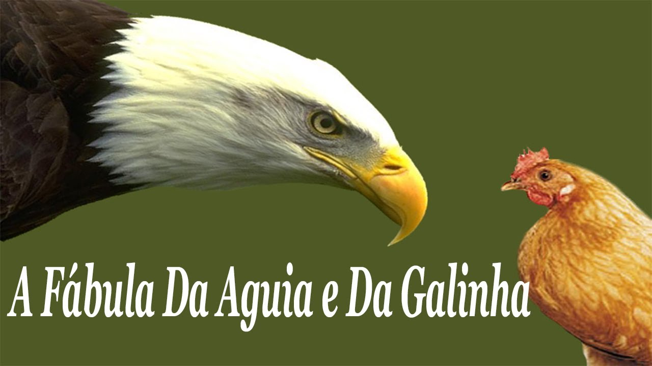 GUIA GALINHA LEONARDO DE BAIXAR BOFF A E A