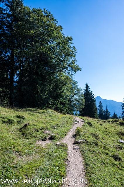 Wanderweg auf der Alm