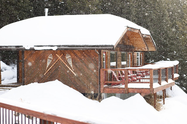 Mount Engadine Lodge Cabins covered in fluffy snow
