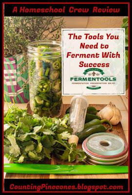 #hsreviews #fermenting #easyfermenting