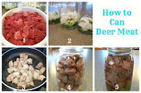 how to can venison