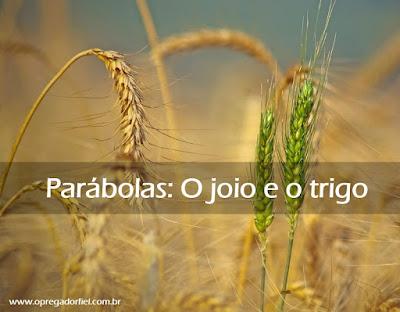 Parábolas: O joio e o trigo