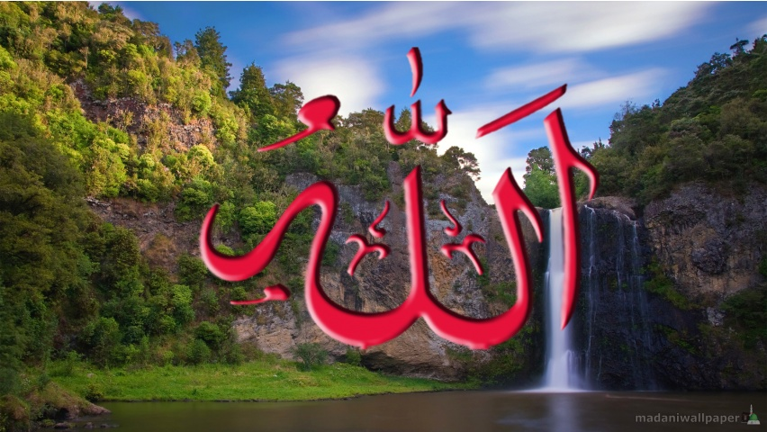 Vidya 3d Name Wallpaper Name Of Allah Wallpaper 3d Wallpaper Nature Wallpaper