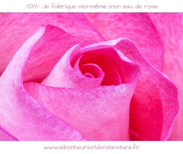DIY eau de rose maison bio gratuit vidéo