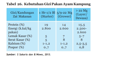 tabel kebutuhan gizi ayam kampung terbaru sesuai status pemeliharaan