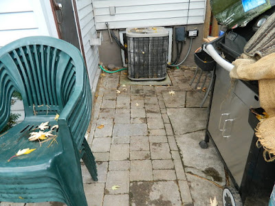 Greenwood-Coxwell Toronto Fall Cleanup Before by Paul Jung Gardening Services--a Toronto Organic Gardening Company
