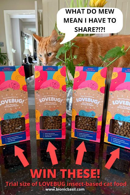 What's In The Box ©BionicBasil® Lovebug Insect-Based Cat Food WIN THESE