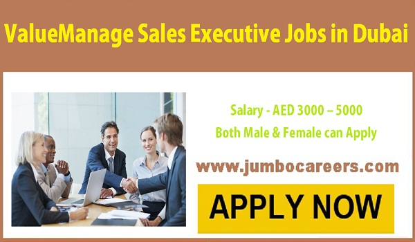 Sales executive jobs in Dubai with salary AED 5000, UAE sales jobs salary descriptions,
