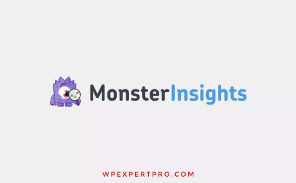 14. MonsterInsights