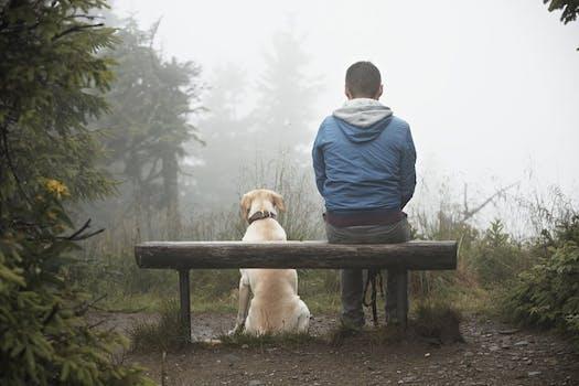 قصة سيدة ساعدت شاب وحيد معه جرو